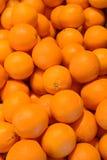 świeże pomarańcze Zdjęcia Stock