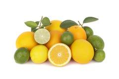 Świeże pomarańcze i cytrusa owoc zdjęcie stock