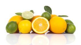 Świeże pomarańcze i cytrusa owoc fotografia stock