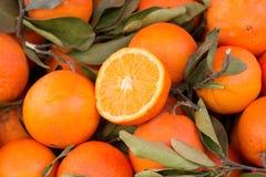 Świeże pomarańcze na rynku obraz royalty free