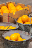 Świeże pomarańcze w metalu forsują na rynku zdjęcia stock