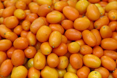Świeże pomarańczowe cumquat cytrusa owoc Obrazy Royalty Free
