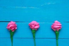 Świeże róże kwitną w promieniu światło na turkus malującym drewnianym tle Selekcyjna ostrość miejsce tekst Zdjęcia Stock