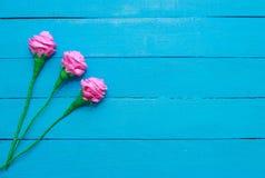 Świeże róże kwitną w promieniu światło na turkus malującym drewnianym tle Selekcyjna ostrość miejsce tekst Zdjęcia Royalty Free