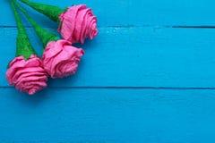 Świeże róże kwitną w promieniu światło na turkus malującym drewnianym tle Selekcyjna ostrość miejsce tekst Obraz Royalty Free
