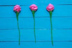 Świeże róże kwitną w promieniu światło na turkus malującym drewnianym tle Selekcyjna ostrość miejsce tekst Zdjęcie Stock