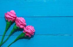 Świeże róże kwitną w promieniu światło na turkus malującym drewnianym tle Selekcyjna ostrość miejsce tekst Obrazy Stock