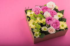 Świeże róże w prezenta pudełku Zdjęcie Royalty Free