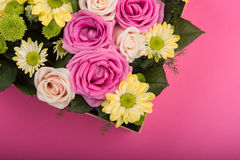 Świeże róże w prezenta pudełku Fotografia Royalty Free