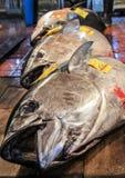 Świeże ryba na rynku w Tokio Obrazy Stock