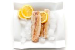 świeże ryby Zdjęcia Royalty Free