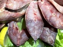 świeże ryby E zdjęcie stock
