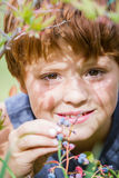 Świeże słodkie jagody Zdjęcie Royalty Free
