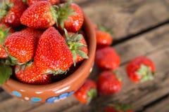 Świeże słodkie truskawkowe jagody Fotografia Stock