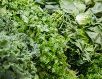 Świeże sałatek zielenie - Folująca rama zdjęcia stock