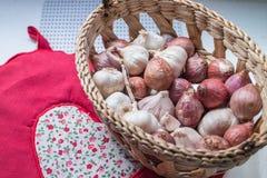 Świeże szalotki i garlics w koszu Zdjęcie Stock