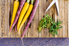 Świeże Tri kolor marchewki Z Rżniętymi ziele Przygotowywającymi dla Piec obraz royalty free