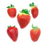 Świeże truskawki Zdjęcie Royalty Free