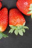 świeże truskawki Obraz Royalty Free