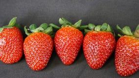 świeże truskawki Fotografia Royalty Free
