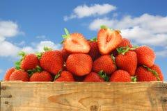 Świeże truskawki i rżnięty jeden Obrazy Stock