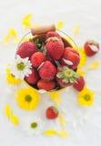 Świeże truskawki w żółtym wiadrze Zdjęcie Stock