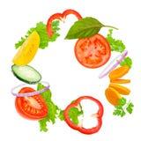 świeże warzywa asortowani Obrazy Stock
