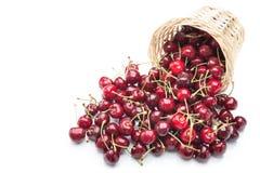 Świeże wiśnie W koszu Fotografia Stock