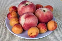 Świeże wyśmienicie moreli i brzoskwini owoc odizolowywać na białym tle Obraz Stock