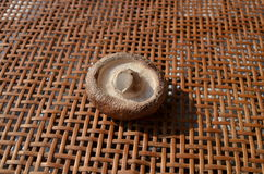 Świeże zdrowe brąz pieczarki Zdjęcie Stock