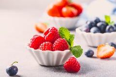 Świeże zdrowe jagody Zdjęcia Stock