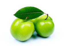 świeże zielone śliwki Obrazy Stock