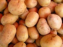 świeże ziemniaki zdjęcia stock