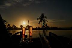 Świeżego lata alkoholicznych napojów egzota zimni koktajle Zdjęcie Stock