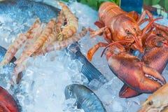 Świeżego owoce morza czerwoni raki, garnele, ryba, kałamarnicy mięso na lodzie przy tradycyjną owoce morza restauracją w Wenecja, Fotografia Royalty Free