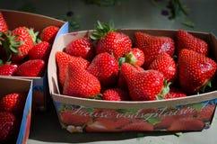 Świeżego rynku truskawki od Francja Obrazy Royalty Free