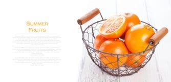 Świeżego soczystego lata krwionośne pomarańcze w rocznika koszu z nowym liściem na drewnianym stole na białym tle Obraz Royalty Free