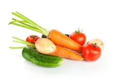świeżego strzału pracowniani warzywa mokrzy Fotografia Stock