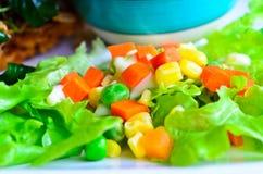 Świeżego warzywa kolorowa sałatka Zdjęcia Stock