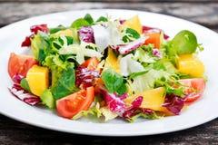Świeżego warzywa mieszanki Mangowa sałatka Zdjęcie Stock