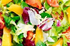 Świeżego warzywa mieszanki Mangowa sałatka Tło Obrazy Stock