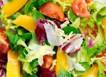 Świeżego warzywa mieszanki Mangowa sałatka Tło Obrazy Royalty Free