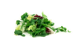 Świeżego warzywa mieszanki sałatka odizolowywająca na białym tle Obraz Stock