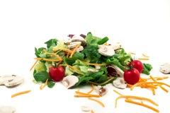 Świeżego warzywa mieszanki sałatka odizolowywająca na białym tle Fotografia Royalty Free