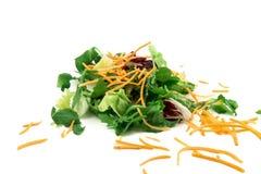 Świeżego warzywa mieszanki sałatka odizolowywająca na białym tle Obraz Royalty Free
