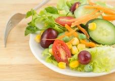 Świeżego warzywa sałatka na bielu talerzu Obraz Stock