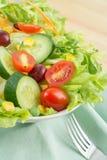 Świeżego warzywa sałatka na talerzu Fotografia Royalty Free