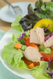 Świeżego warzywa sałatka z tuńczykiem Obrazy Royalty Free