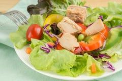 Świeżego warzywa sałatka z tuńczykiem Fotografia Stock