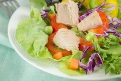 Świeżego warzywa sałatka z tuńczykiem Obrazy Stock